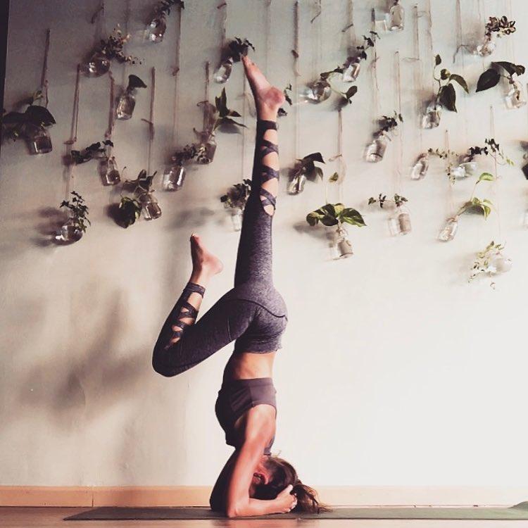 yoga-hive